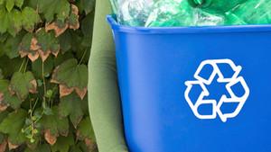 ¿Cómo les fue en el día internacional del reciclaje?