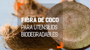 Fibra de Coco para crear utensilios desechables biodegradables