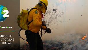 Incendio daña 135 hectáreas de Reserva de la Biósfera el Triunfo en Chiapas