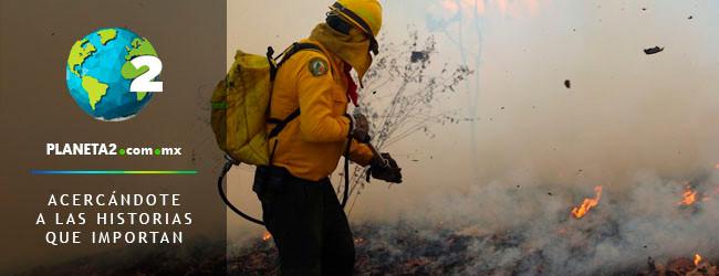 incendio reserva de la biósfera el triunfo 2019
