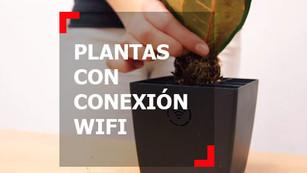 Plantas que te conectan y cargan tu teléfono