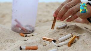 Diputados presentan iniciativa que prohíbe la venta y consumo de tabaco en playas y áreas naturales