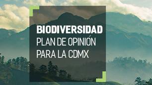 Sedema invita al periodo de opinión para la biodiversidad de la CDMX