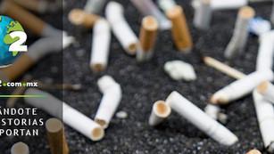 Cigarro y colillas de cigarro, enemigos silenciosos de los océanos