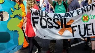 BP planea perforar en busca de gas cerca del arrecife de coral de agua fría más grande del mundo