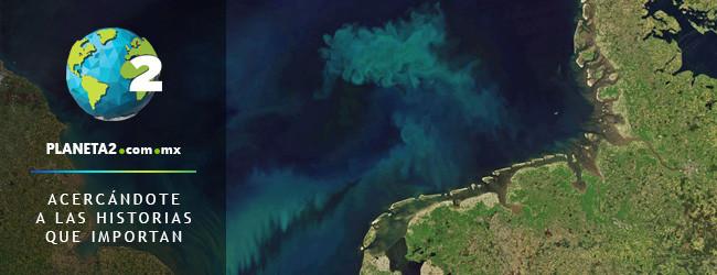 calentamiento global cambiará el color de los océanos