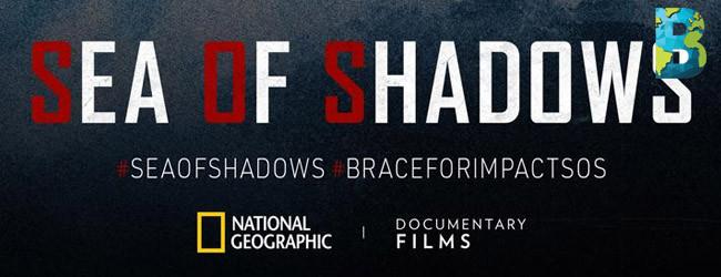 sea of shadows leonardo dicaprio vs druglords
