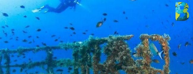 Arrecife artificial Uribe 121 mantiene crecimiento