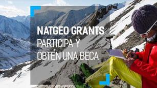 National Geographic abre convocatoria para otorgar becas a proyectos ambientalistas
