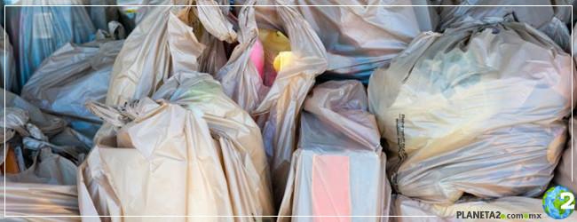 Querétaro antiplástico bolsas