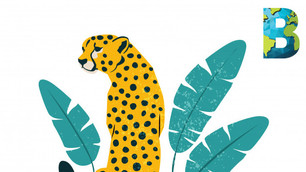 México tiene 2,587 especies en peligro de extinción y/o en riesgo