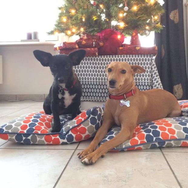 Lola en Kazzie