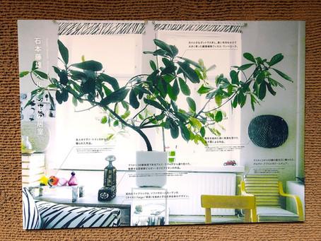 京都細見美術館でマリメッコのデザイナーをされていた石本藤雄展に行ってきました。