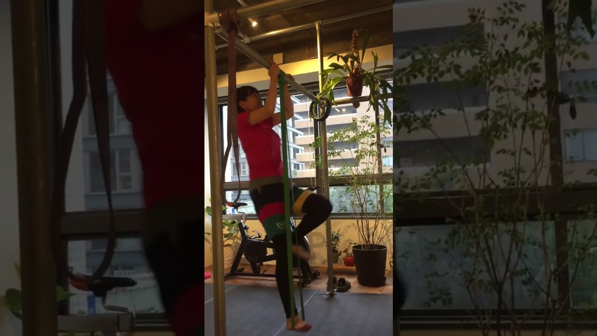 懸垂トレーニング