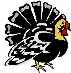montauk turkey.png