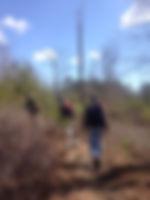 on the path.jpg