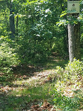 RCM Peconic Green Path.jpg
