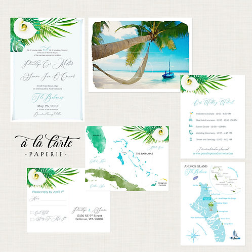 Bahamas Destination wedding invitation Tropical Beach illustrated watercolor