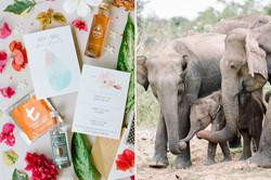 Sri Lanka Custom Wedding Invitation Suite