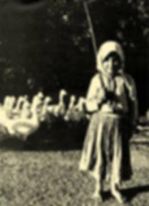 Mindennapi élet történelmi fotókon Libapásztor Nógrádban, 1930 körül.