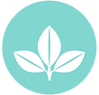 plant icon teal 001.png