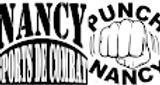 logo NSC Punch 2017.png