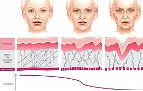 Et effektivt ansigtsyogaprogram består foruden muskeltræning også af facelifting massage, som fremmer blodgennemstrømningen og dermed sætter gang i opbyggelse af kollagen.