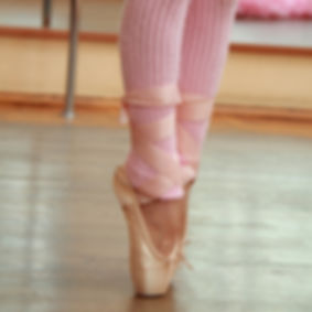 Ballet pointe shoes Bloch Grishko Freed