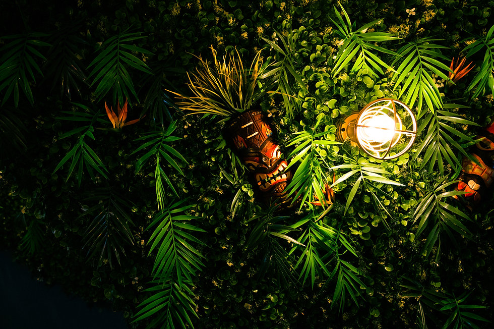 TT_Foliagebackground.jpg