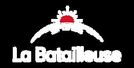 LB_Logo_RVB_developpe fond fonce.png