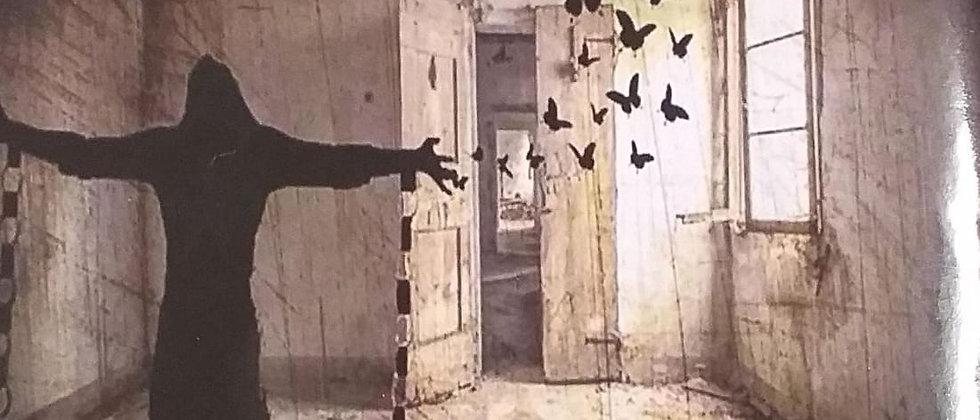 هواجس خلف الجدران