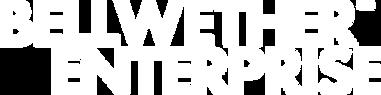 BWE Logo_White.png