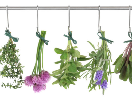 Discover the wonder of herbs. They're not just for cooking.