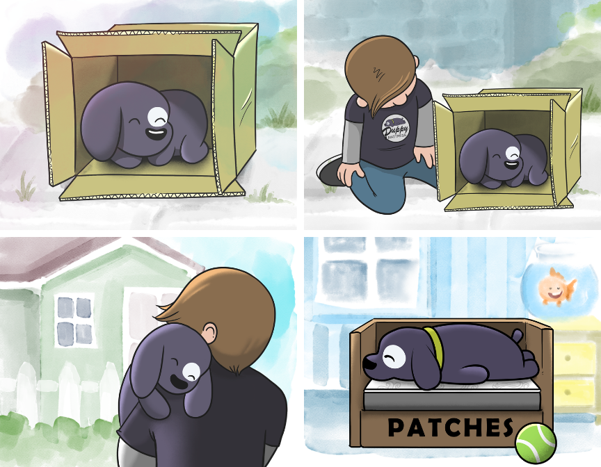 patches_story.png