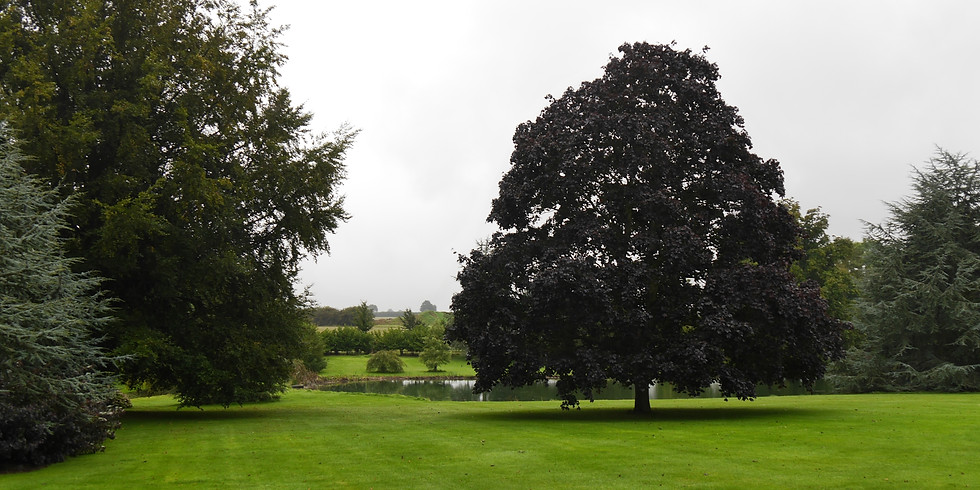 Guided tour and talk at Ashfield House Arboretum
