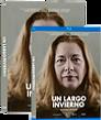 DVD-I-Un-largo-invierno.png