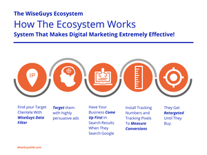 WiseGuys Ecosystem