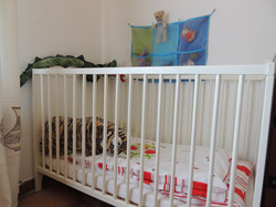 Infant / Toddler Fixed Sleeping Crib