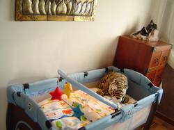 Infant / Toddler Travel Sleeping Cot