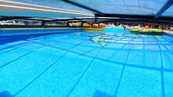 Swimming Under Luxury Enclosure