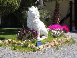 Lion & Tropical Plants