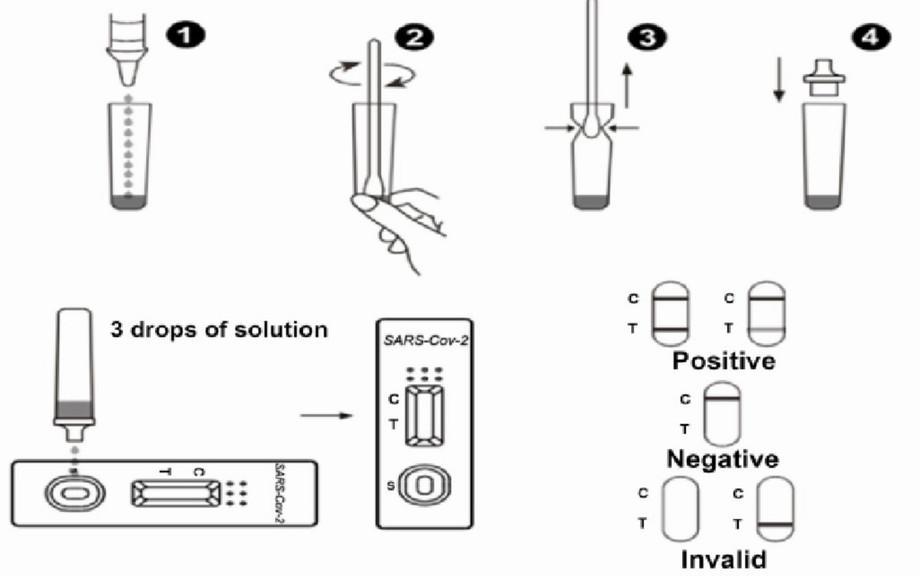 C19 Diagnostic Tests, Rapid Antigen Swab Test Results, Positive, Negative, Invalid