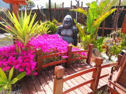 Gorilla, Banana Tree, Tropical Plant