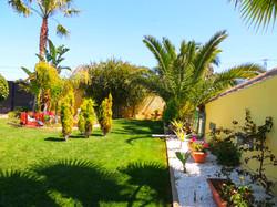 Beautiful Green Lawns & Palm Trees