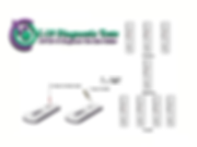 COVID-19, 10Minute Rapid Antibody Tests.