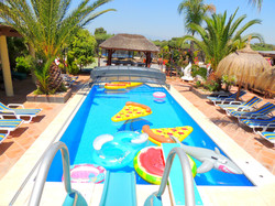 Selection Of Pool Inflatables
