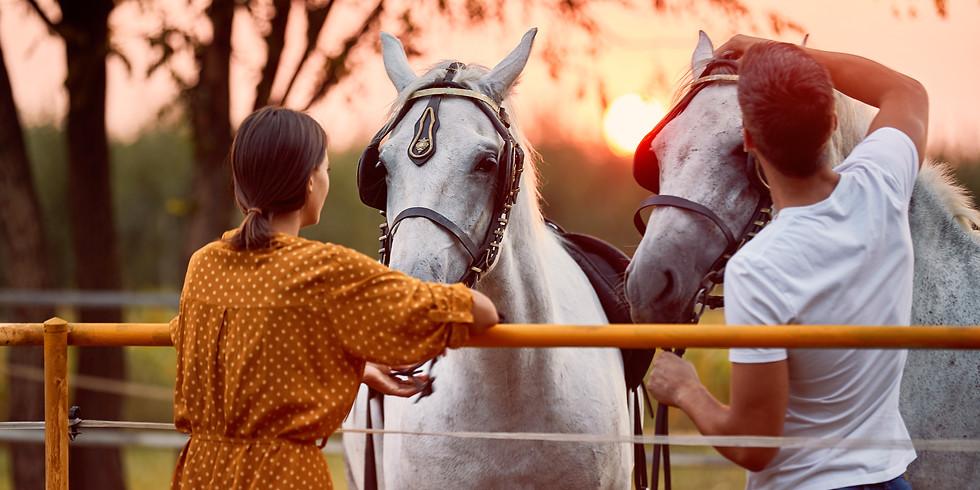 Family Healing with Horses Retreat