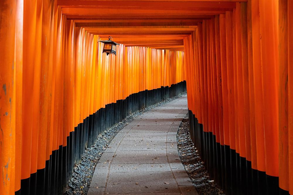 Tunnel fatto di Torii a Kyoto, Fushimi Inari