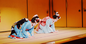 La Geisha, spiegata semplice
