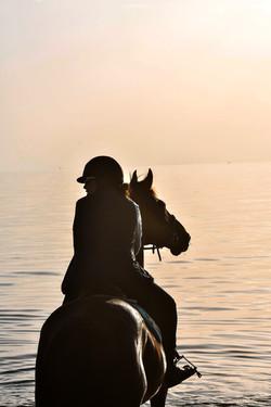 Balade sur la plage à cheval